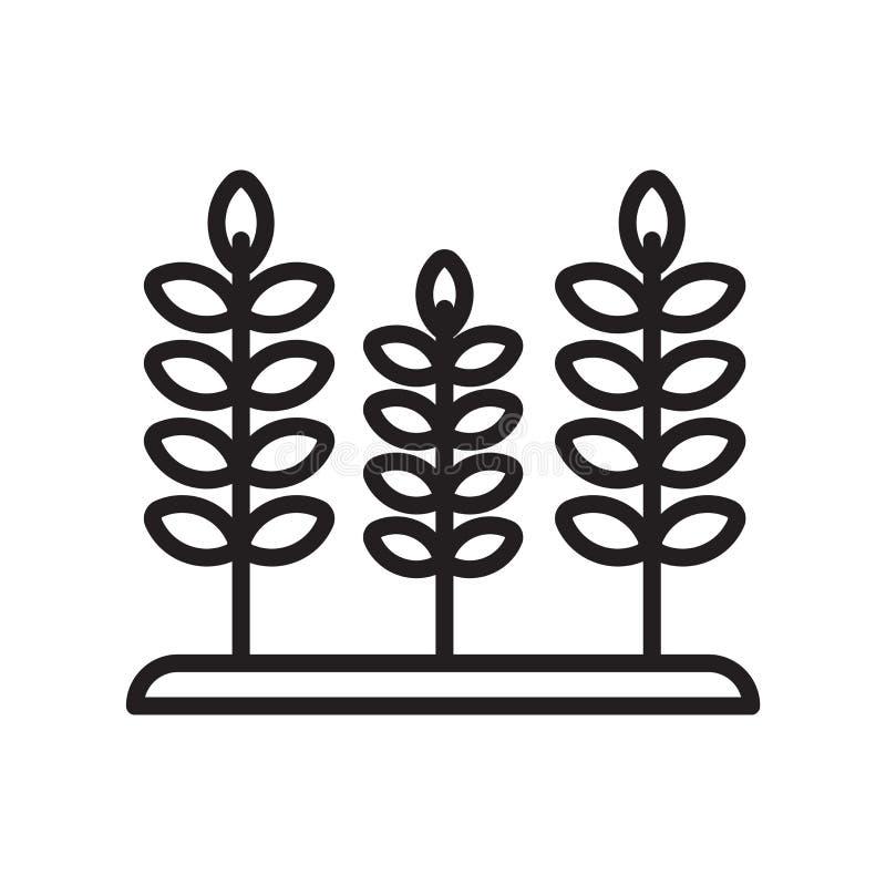 Tecken och symbol för kornsymbolsvektor som isoleras på vit bakgrund, kornlogobegrepp, översiktssymbol, linjärt tecken, översikt stock illustrationer