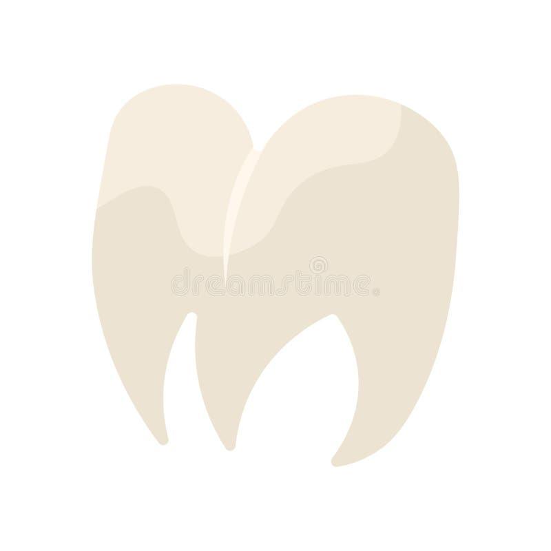 Tecken och symbol för premolarsymbolsvektor som isoleras på vit backgroun vektor illustrationer