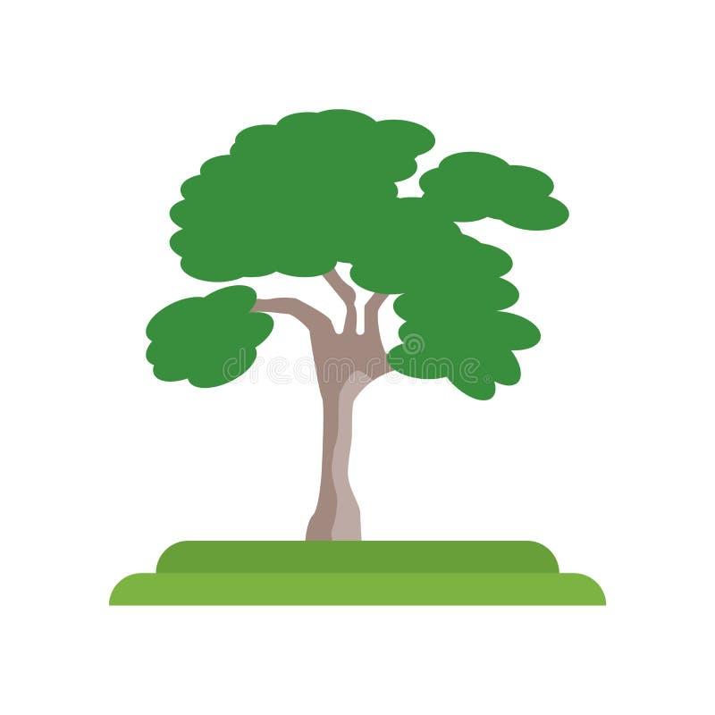 Tecken och symbol för vektor för symbol för träd för amerikansk alm som isoleras på vit stock illustrationer