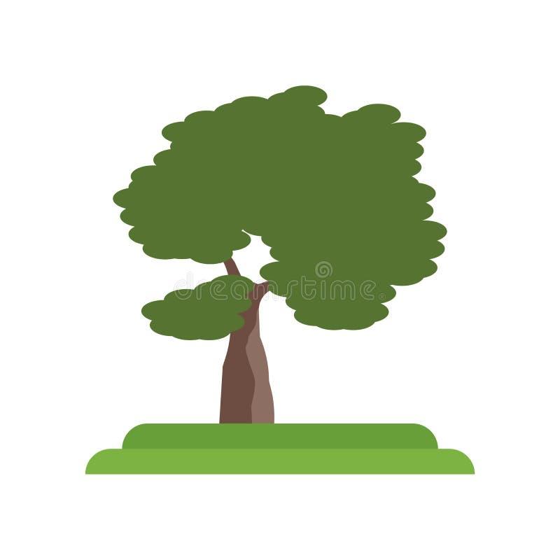 Tecken och symbol för vektor för symbol för träd för hal alm som isoleras på vit royaltyfri illustrationer