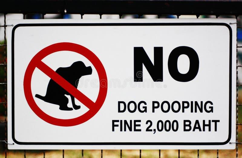 Teckenhund royaltyfri bild