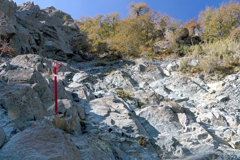 Teckenstolpen på treken av La Campana National parkerar i centrala Chile, Sydamerika royaltyfri bild