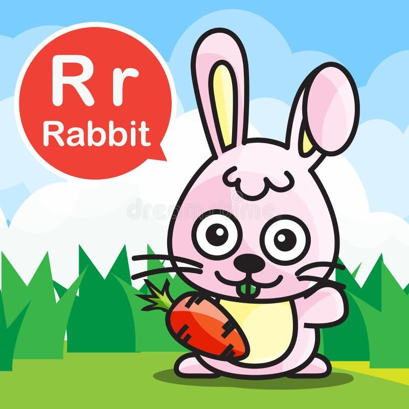 Tecknad film och alfabet för r-kaninfärg för barn till att lära vec royaltyfri illustrationer
