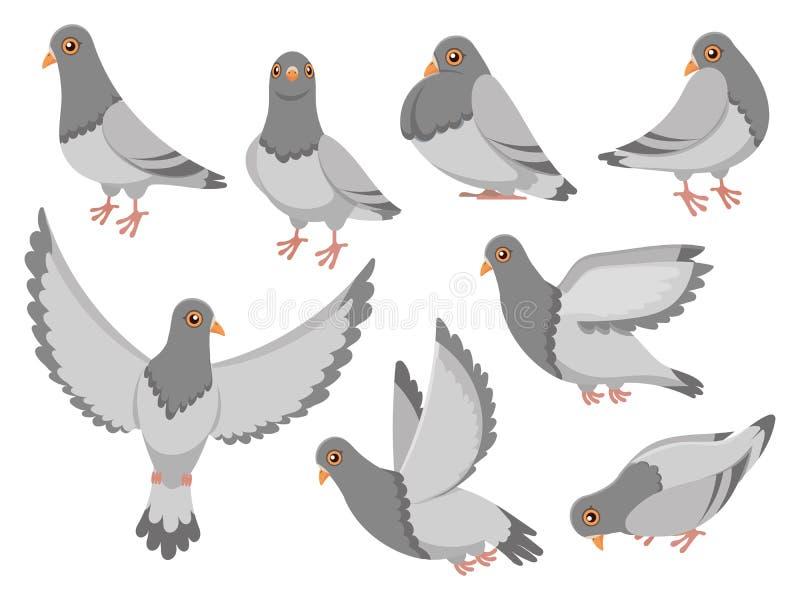Tecknad filmduva Stadsduvafågel och att flyga för vektorillustration för duvor och för stadfåglar den duvor isolerade uppsättning vektor illustrationer
