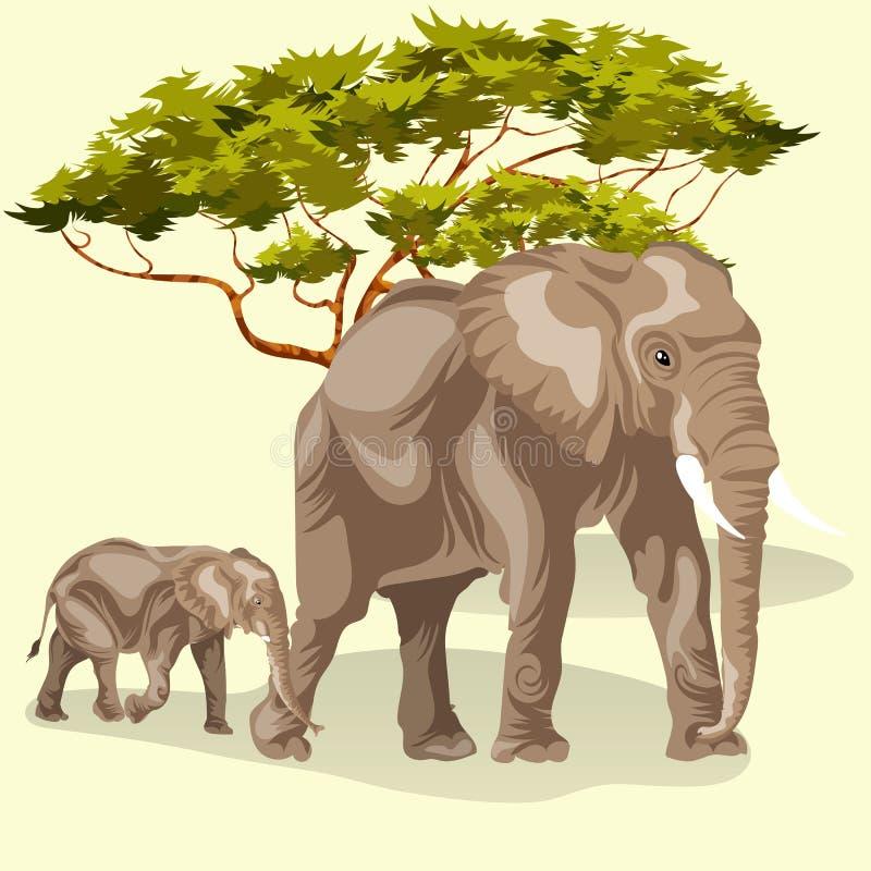 Tecknad filmfamilj av afrikanska elefanter som går i savannah stock illustrationer
