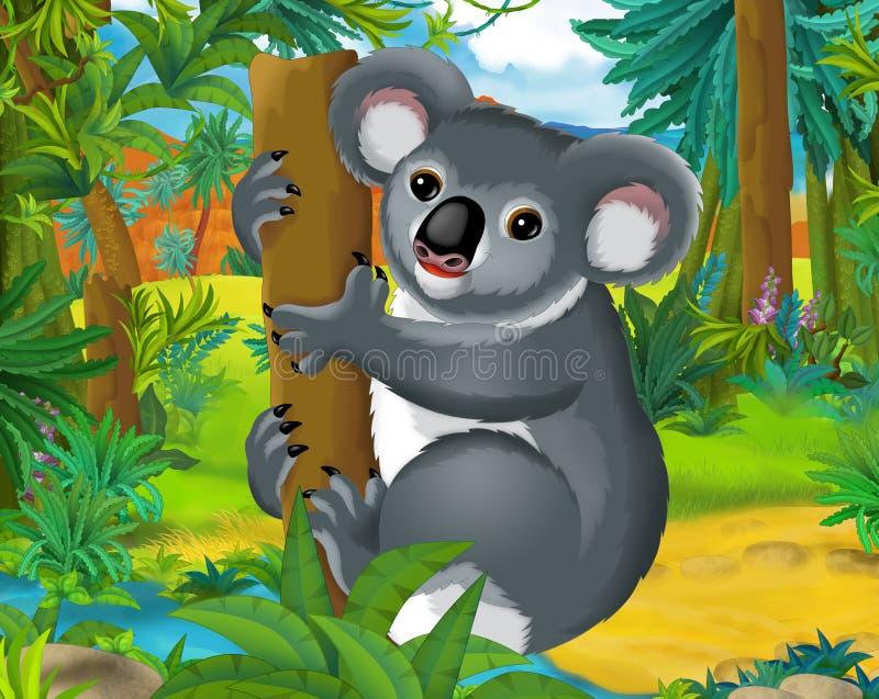 Tecknad filmplats - lösa Amerika djur - koala vektor illustrationer
