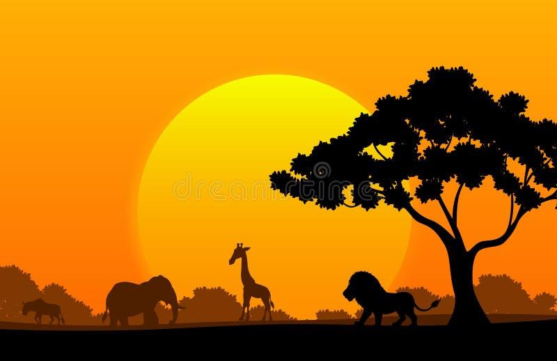 Tecknad filmsamlingsdjur i africaen vektor illustrationer