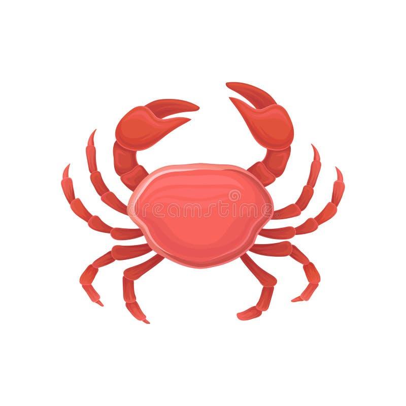 Tecknad filmsymbol med den röda krabban äta som är sunt Marin- produkt Planlägg för restaurangmenyn, logoen, promoaffischen, rekl royaltyfri illustrationer