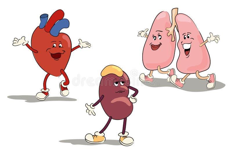 Tecknad filmtecken - uppsättning av mänskliga inre organ stock illustrationer