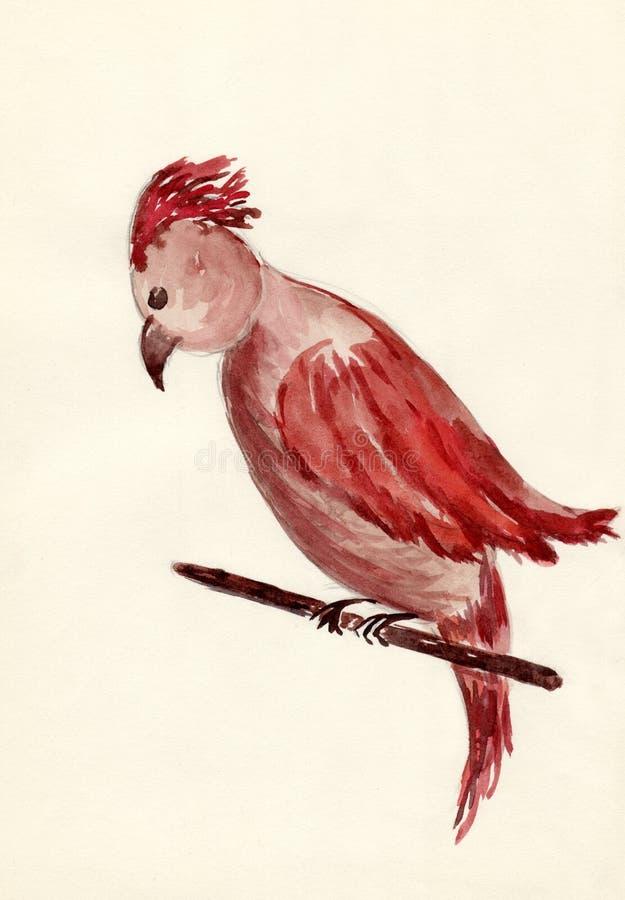 tecknad papegoja arkivbild