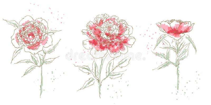 tecknad pion tre vektor illustrationer