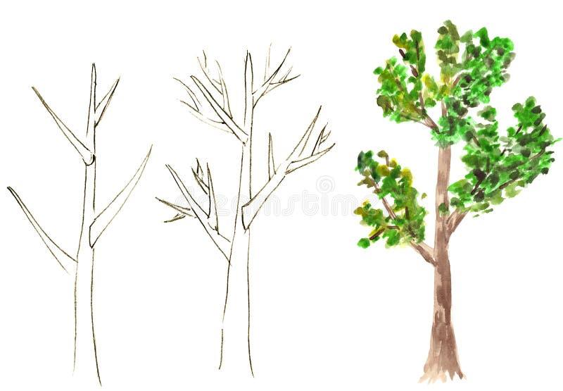 tecknad tree royaltyfri fotografi