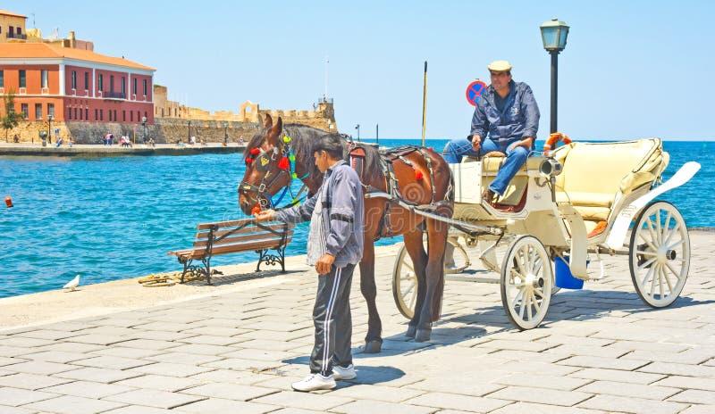 tecknade hästen för chaniaen taxar den crete royaltyfria bilder