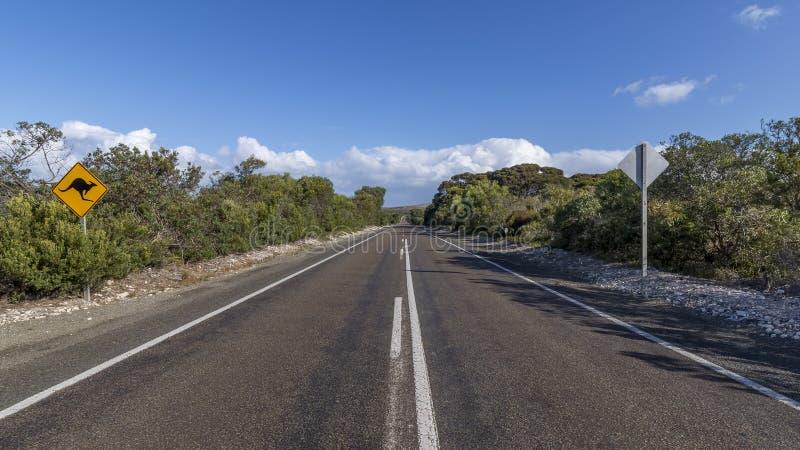 Tecknet indikerar faran av att korsa kängurur på en väg i känguruön, sydliga Australien fotografering för bildbyråer