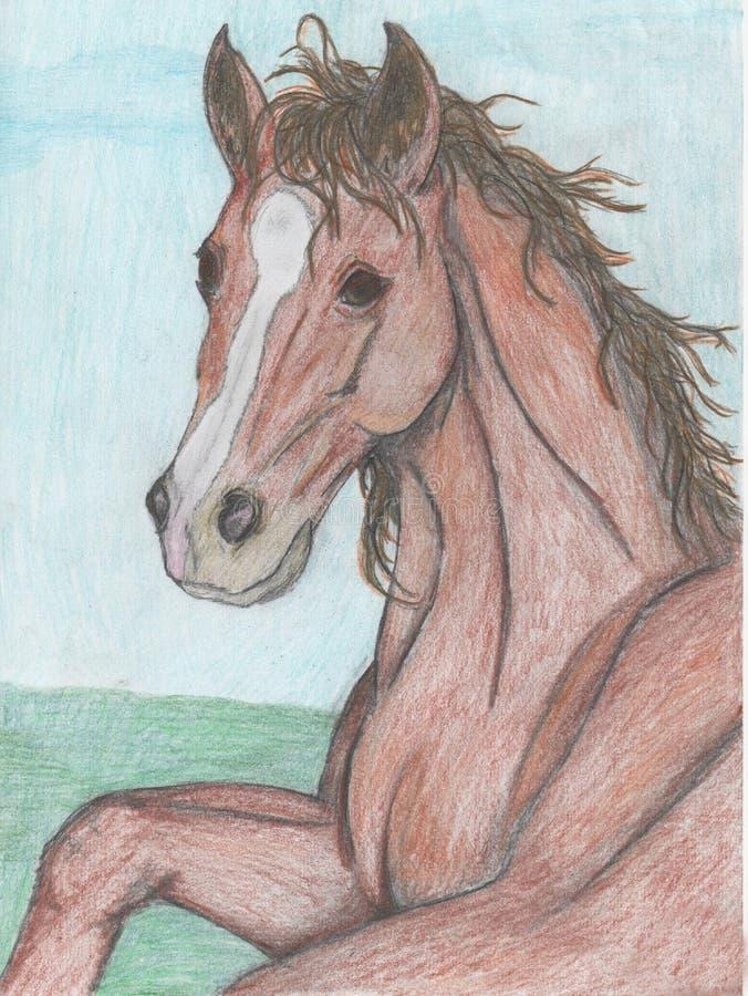 Teckning av en häst royaltyfria foton