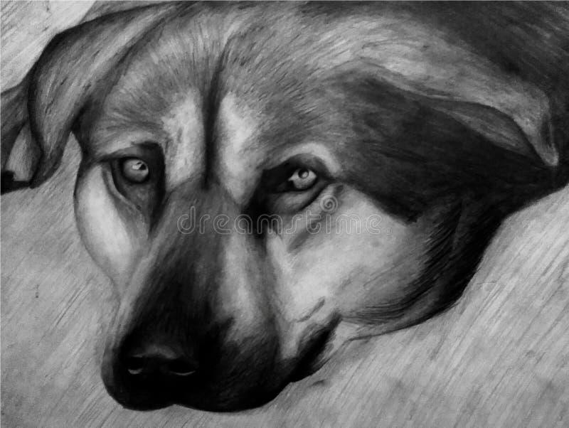 Teckning av en hund i svartvitt vektor illustrationer