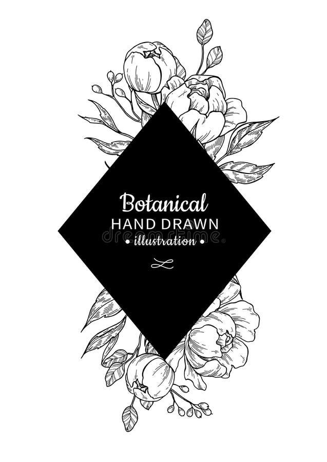 Teckning för ram för tappningblommavektor Pion, ros, sidor och ber royaltyfri illustrationer