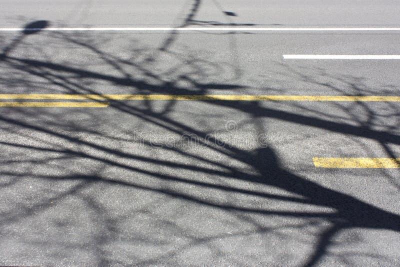 Teckning för vägyttersida och trädskuggor på den tomma stadsgatan royaltyfri foto