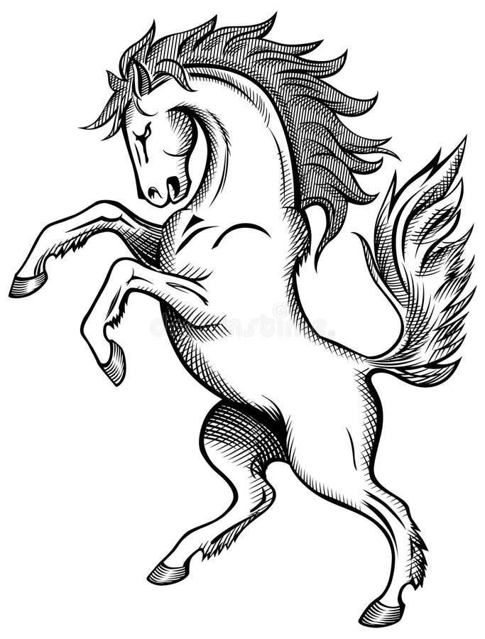 teckningshäst stock illustrationer