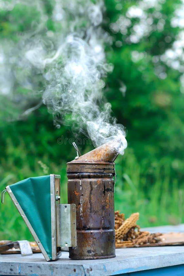 Tecnología de la fumigación de abejas Humo que intoxica para la producción segura de la miel imágenes de archivo libres de regalías