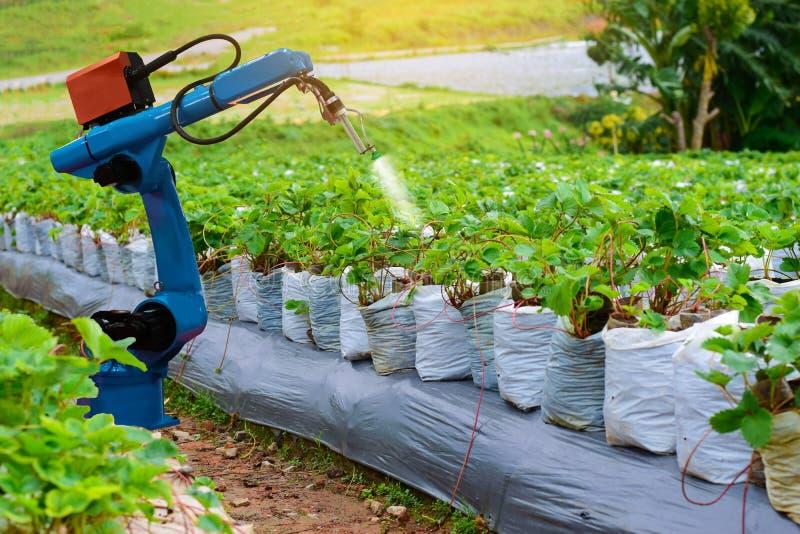 Tecnologia de trabalho do braço mecânico dos robôs da maquinaria agrícola imagens de stock royalty free