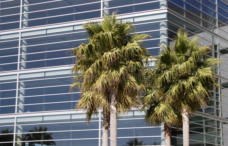 Tecnologia tropicale 1 immagini stock libere da diritti