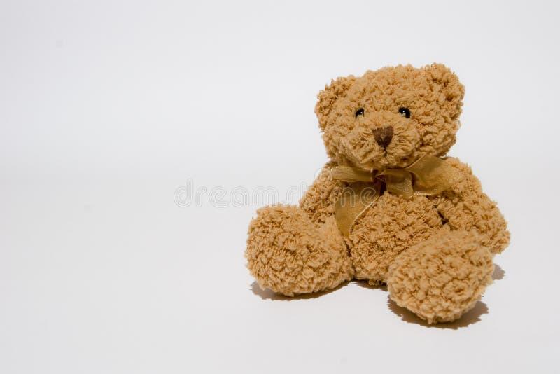 Teddy stock fotografie