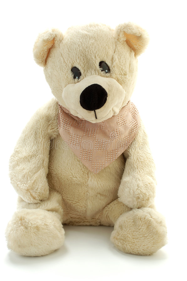 Teddy royalty-vrije stock afbeelding
