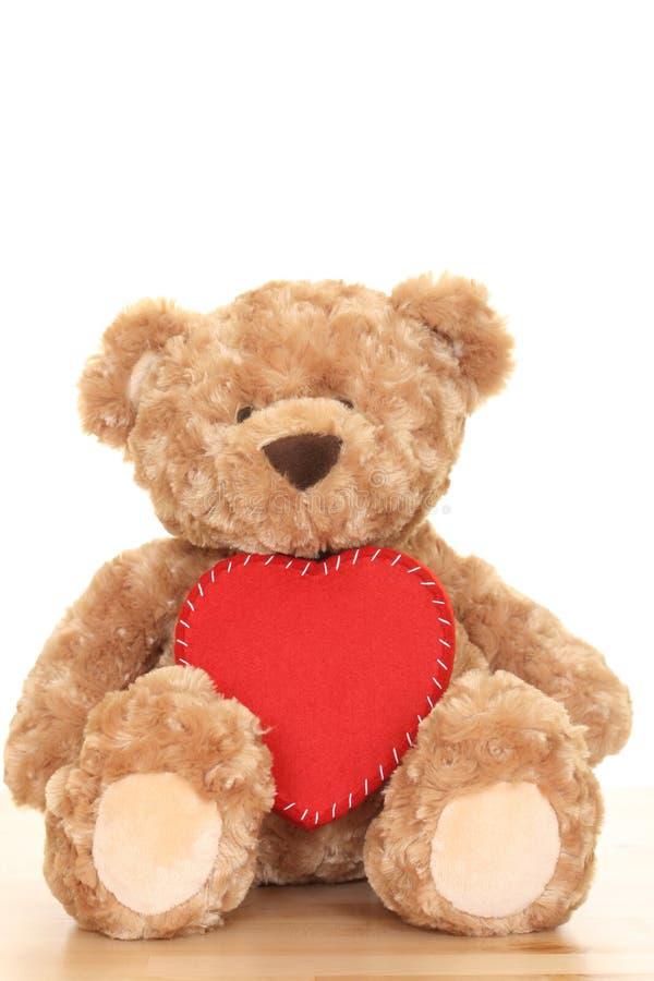 teddy obraz stock