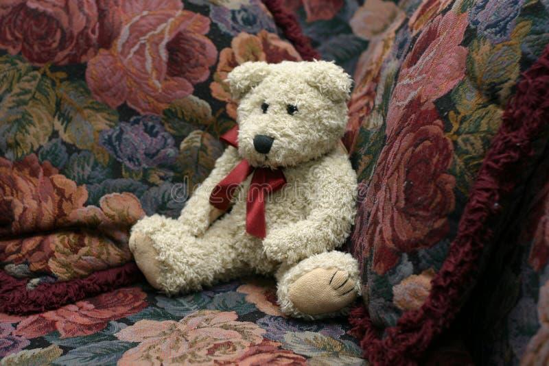 teddy zdjęcia stock