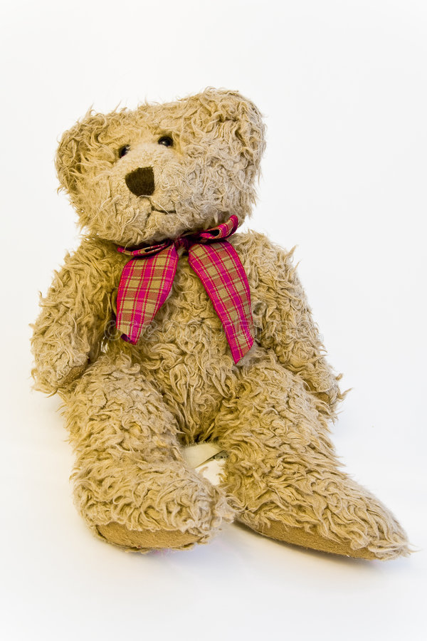 teddy fotografia stock