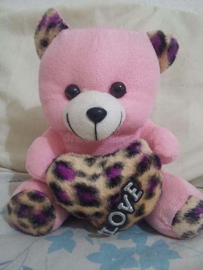 teddy στοκ εικόνες