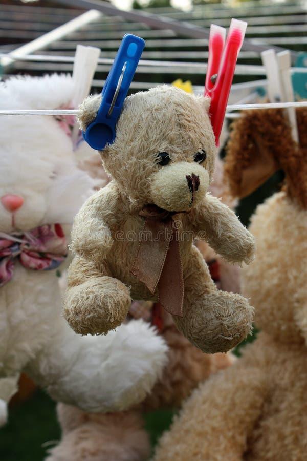 Free Teddy Bear Royalty Free Stock Photos - 11232728