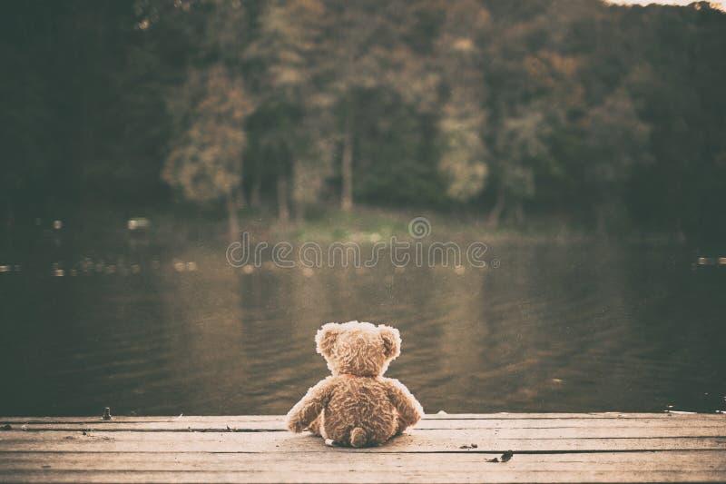 Teddy Bear stockfotografie