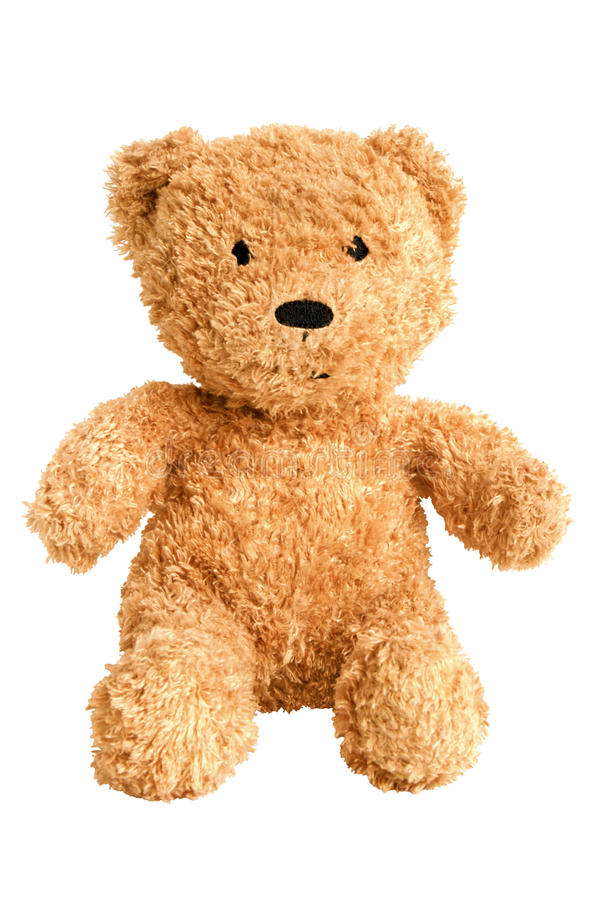 Teddy bear. Isolated on the white background royalty free stock image