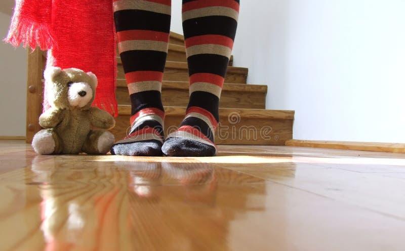 teddy bear obraz stock