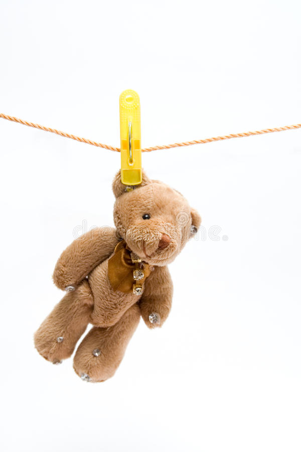 Free Teddy Bear Royalty Free Stock Images - 15024589