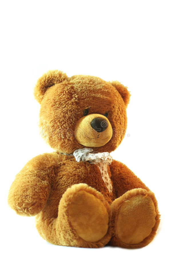 teddy bear obraz royalty free
