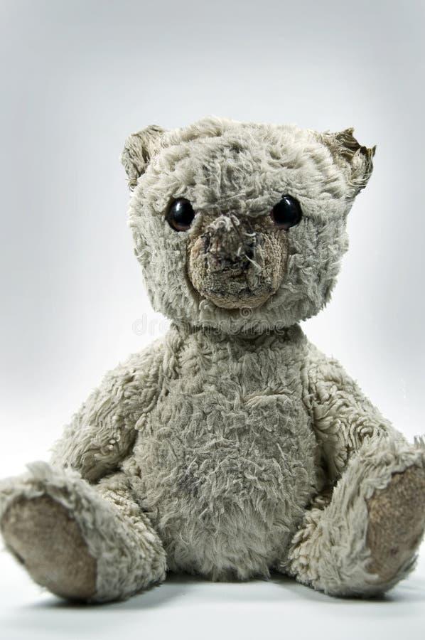 teddy bear obrazy stock