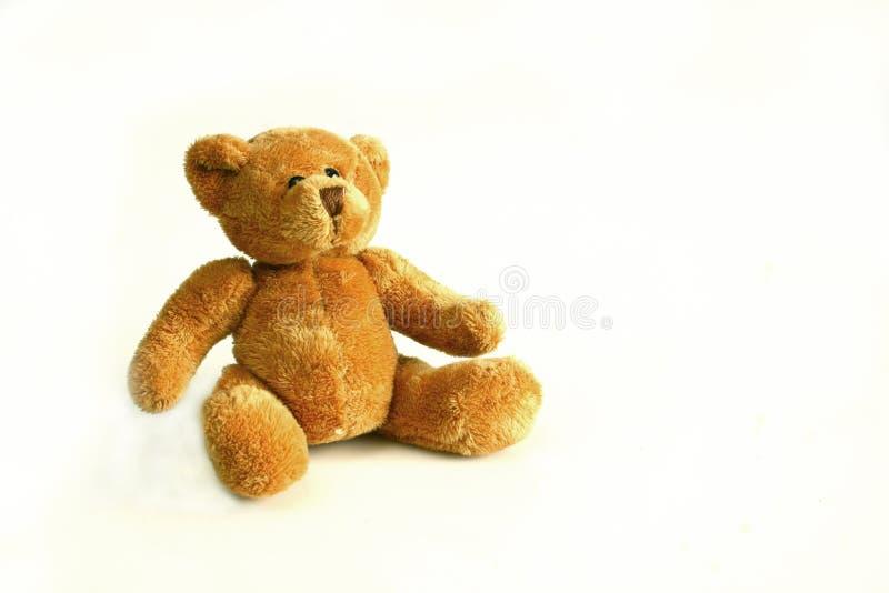teddy bear fotografia royalty free