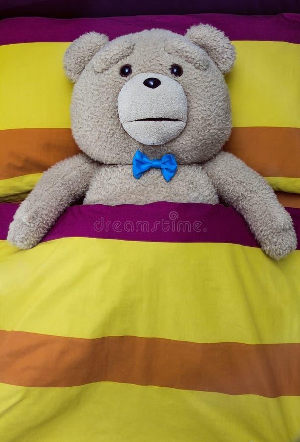 Teddy Bear fotografia de stock