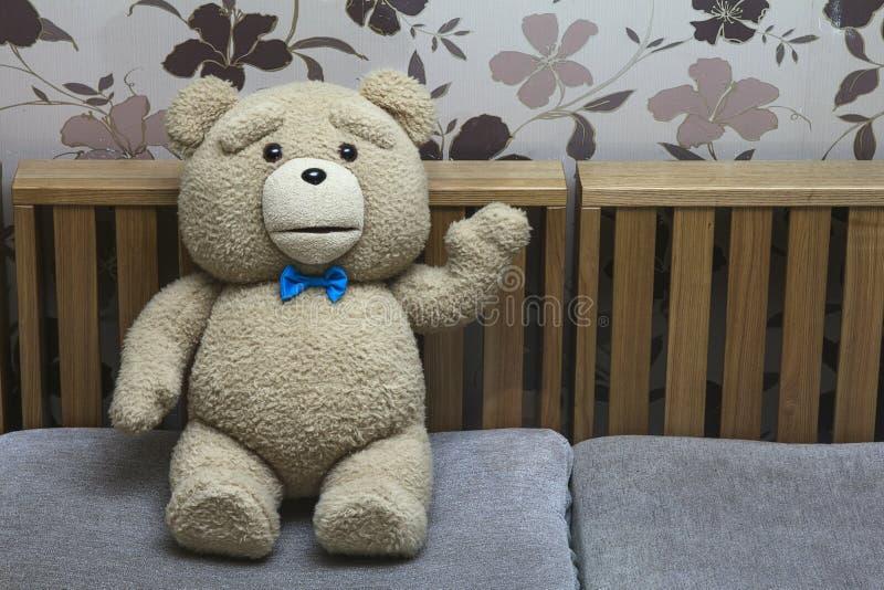Teddy Bear fotografia de stock royalty free