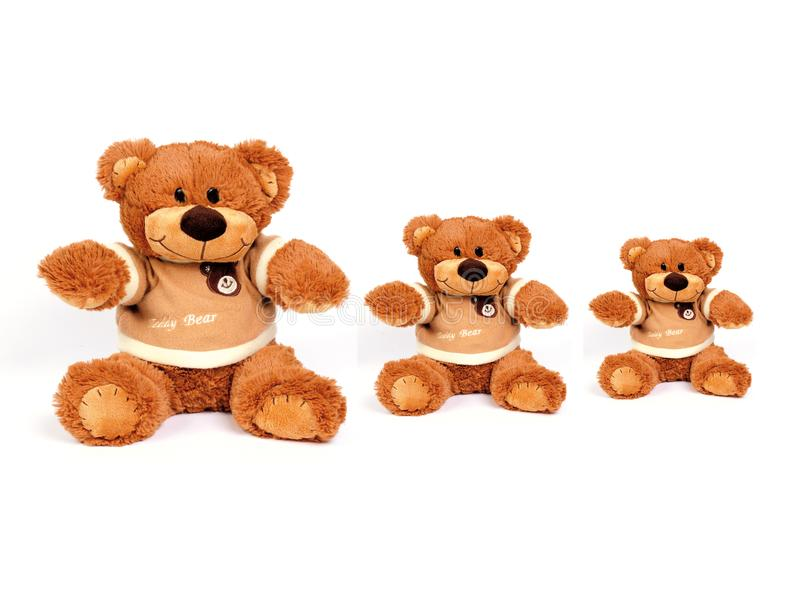 Download Teddy bear stock photo. Image of object, animal, stuffed - 8362600