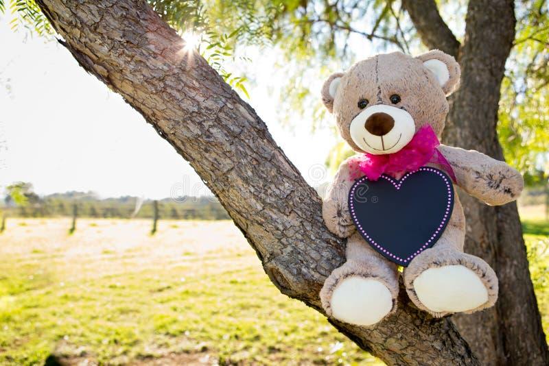 Teddy Bear-aankondigingskaart met roze lint en lege blackboa royalty-vrije stock foto's