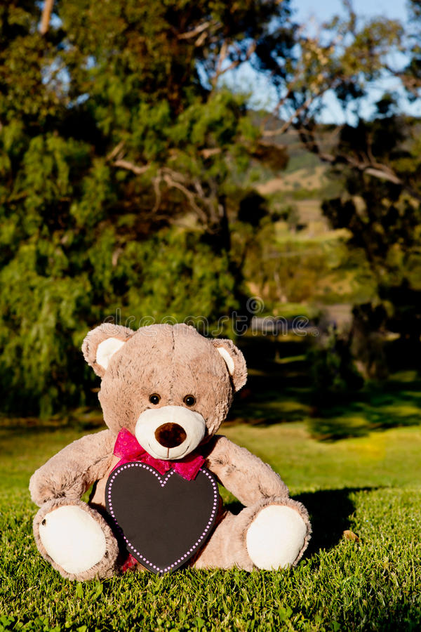 Teddy Bear announcement card with pink ribbon and blank blackboard heart sitting on grass with trees in background stock photography