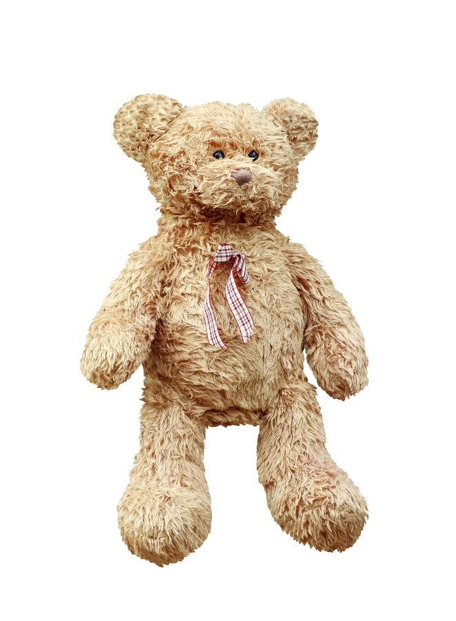 Teddy Bear brown, Teddy Bear doll isolated on white background stock photography