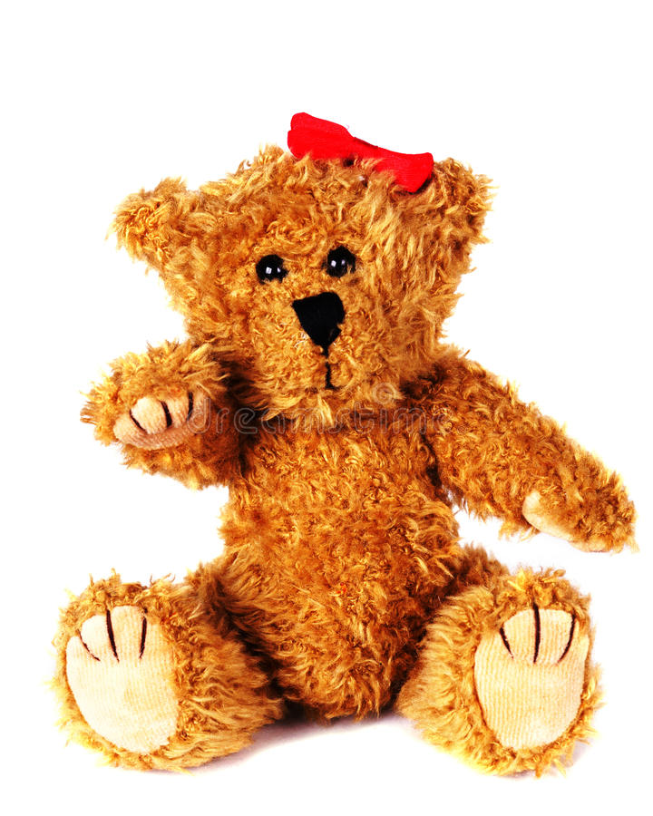Teddy Bear. Brown Teddy Bear on white isolated background royalty free stock images