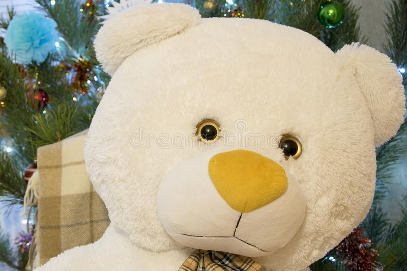 Teddy bear closeup. Cute toy over decorated pine tree. Christmas or New Year gift stock images