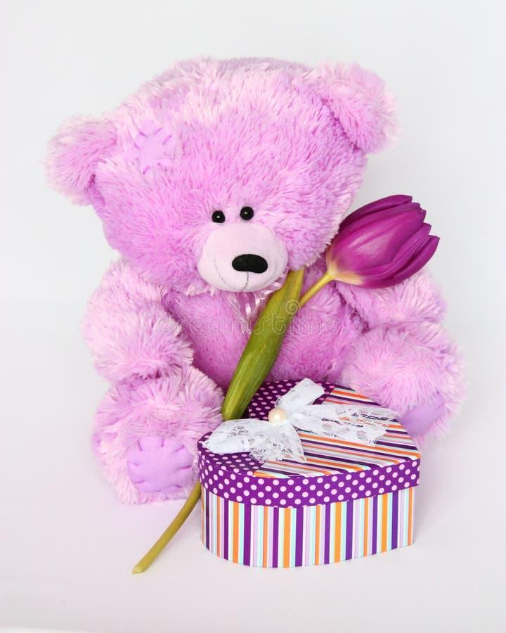 Teddy Bear con el tulipán - fotos de la acción del día de tarjetas del día de San Valentín foto de archivo libre de regalías
