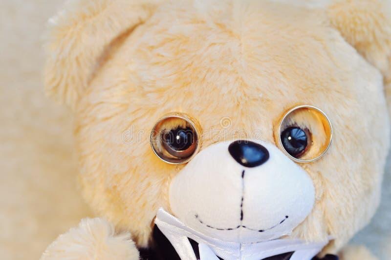 Teddy Bear con los anillos fotografía de archivo